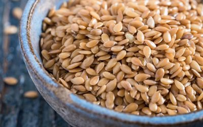FLAX SEEDS, ALLY FOOD IN BREAST CANCER AND PROSTATE