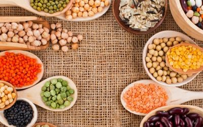 Can you live with a vegan diet and have no amino acid deficit?