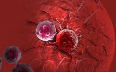 What does the cancer cells eat?